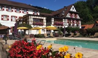 Cheval-blanc-niedersteinbach-piscine