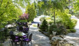 hôtel séminaire Petit Kohlberg - terrasse